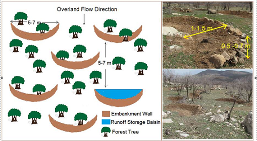 Effects of runoff harvesting through semi-circular bund on some soil characteristics